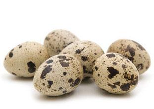 œuf de caille