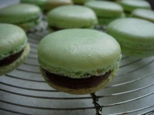 Macarons (the original French macaroons)  : Photo of step #24