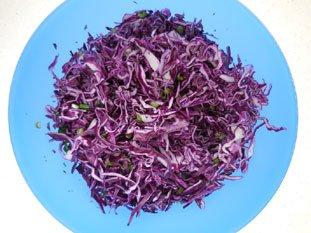 Salade de chou rouge à la ciboule : Photo de l'étape 9