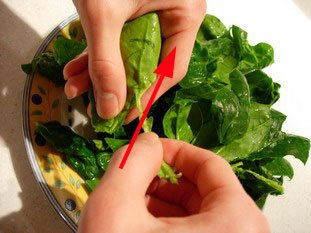 Comment préparer des épinards : Photo de l'étape 7