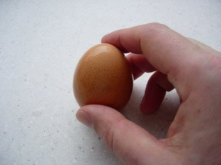 How to cook hard-boiled eggs properly  : Photo of step #9