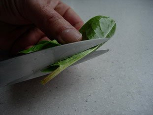 Comment préparer de l'oseille : Photo de l'étape 3