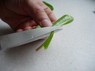 Comment préparer de l'oseille : Photo de l'étape 4