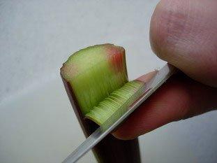 Comment préparer de la rhubarbe : Photo de l'étape 2
