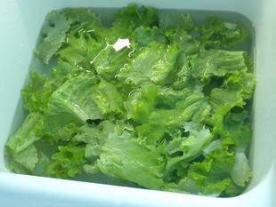 Comment préparer une salade : Photo de l'étape 6
